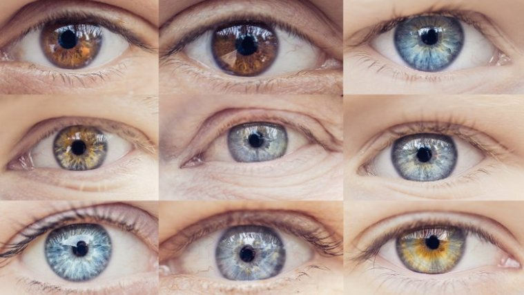 brown-eyes-are-overwhelming-the-most-common-1565374401