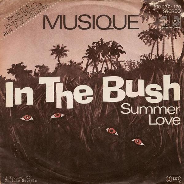musique-inthebush